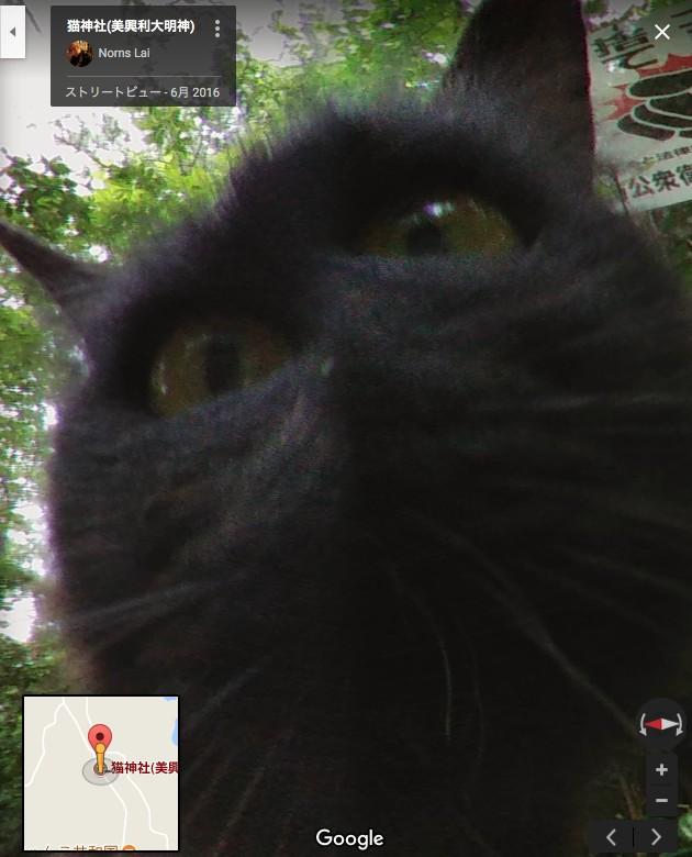 猫神社(美興利大明神)に関連した画像-07
