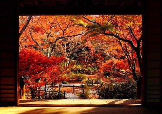 京都のお寺が次々と撮影禁止に関連した画像-10