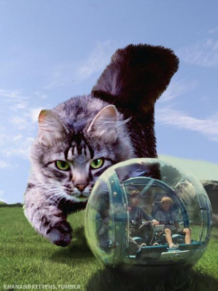 「ジュラシック・ワールド」の恐竜を猫にに関連した画像-15