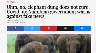ナミビア 象 糞に関連した画像-02