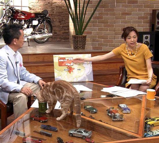 田勢康弘の週刊ニュース新書に関連した画像-08