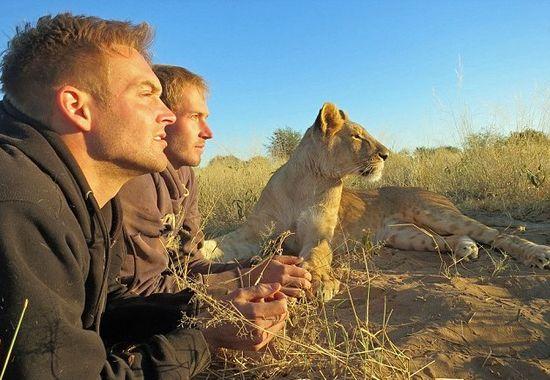 ライオンが愛情たっぷりに男性に抱きつくに関連した画像-04
