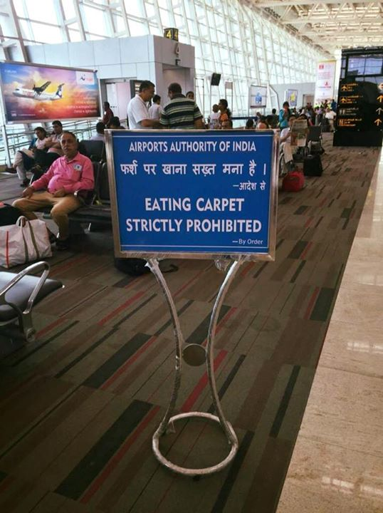 カーペットを食べるのは厳禁ですに関連した画像-02