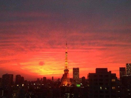 2014年最も記憶に残る、日本発のツイッター画像に関連した画像-28