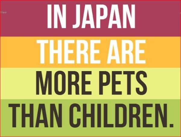 日本の知られざる衝撃的な事実に関連した画像-21