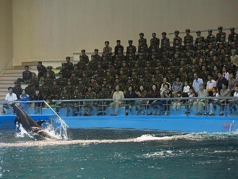 絶対に見てはいけない北朝鮮の実態に関連した画像-21