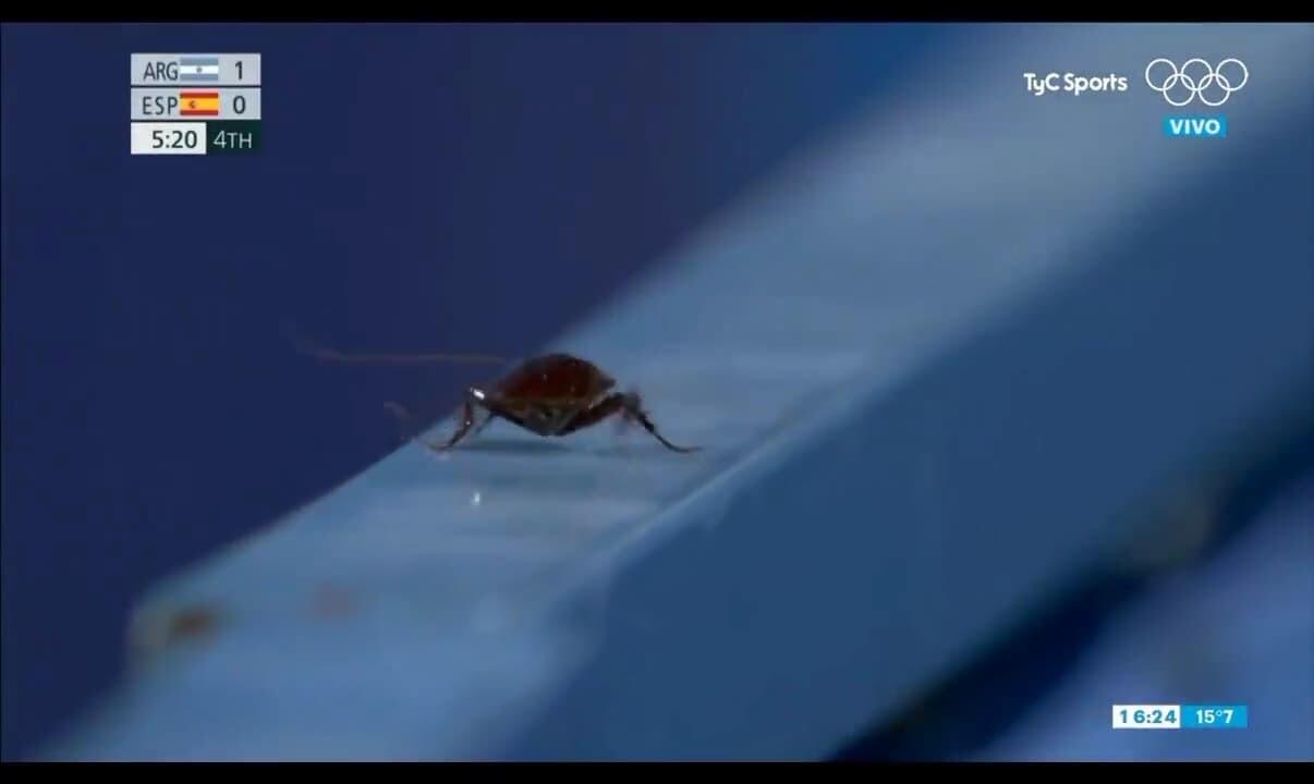 ゴキブリ オリンピック 東京五輪 ホッケー