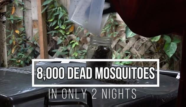 一晩で蚊4000匹を捕獲に関連した画像-08