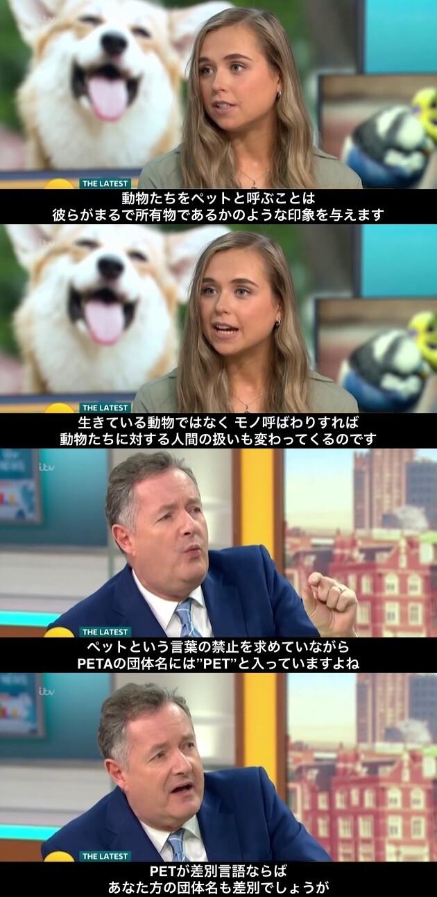 「ペット」という単語は差別的に関連した画像-02