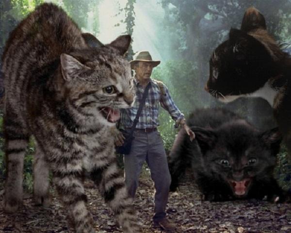 「ジュラシック・ワールド」の恐竜を猫にに関連した画像-09