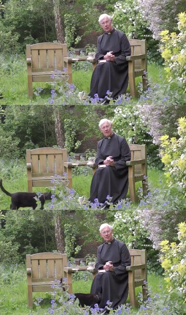 説教 カンタベリー大聖堂 ネコ 猫 イギリスに関連した画像-02