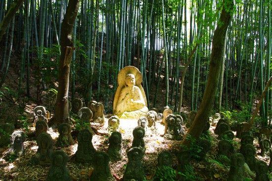京都のお寺が次々と撮影禁止に関連した画像-06