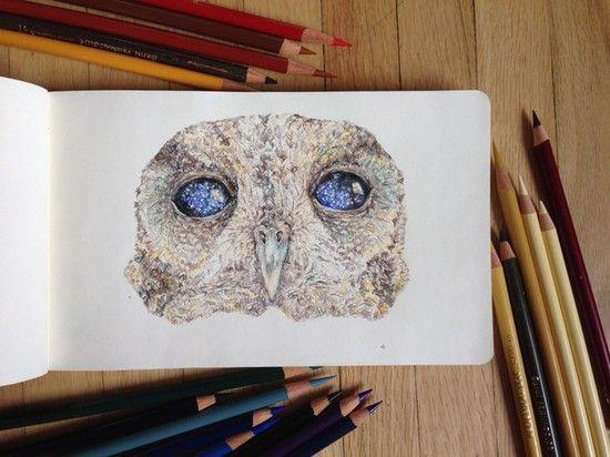 「宇宙の瞳」を持つ盲目のフクロウに関連した画像-07