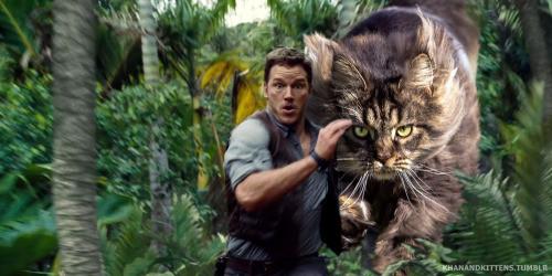 「ジュラシック・ワールド」の恐竜を猫にに関連した画像-18