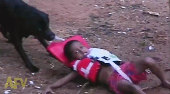 救助犬が水遊びを楽しむ子供を救助に関連した画像-01