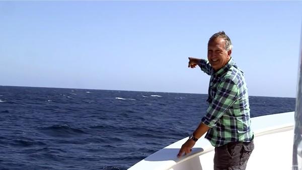 絶好のタイミングでシロナガスクジラが登場するハプニングに関連した画像-05