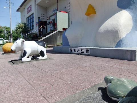 W800Q80_2017-06-03 天浜線マラニック3 086