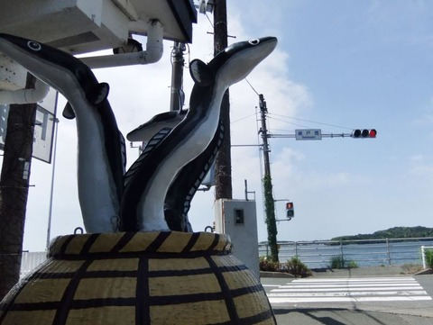 W800Q80_2017-06-03 天浜線マラニック3 018