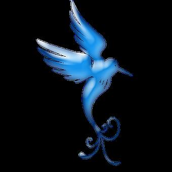 bird-2112724__340
