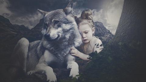 wolf-3581809__340