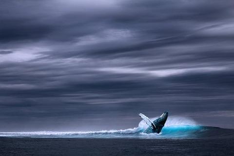 ocean-2051760__340