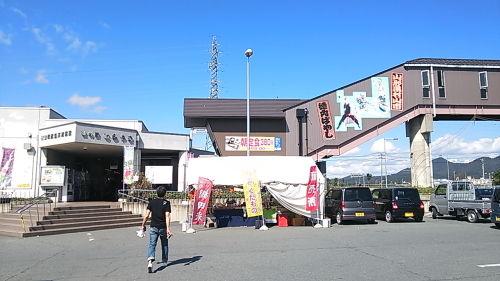 IWAKIYAMAGATA_08