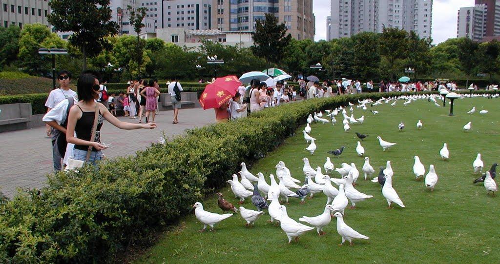 上海人民公園