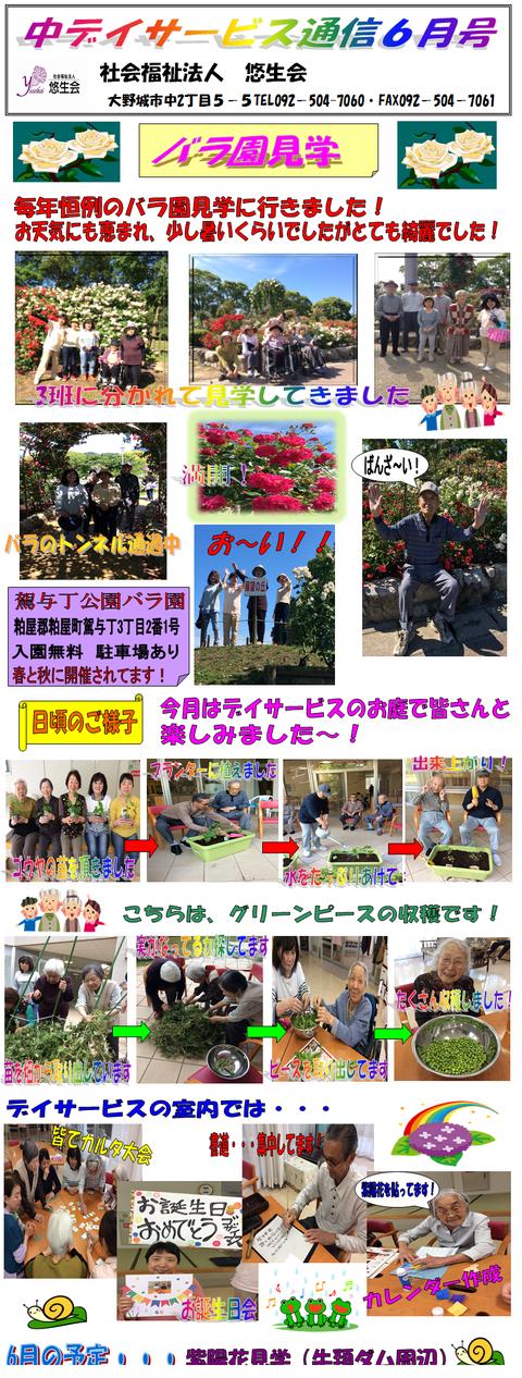 中デイ通信6月号