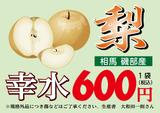 nashi(幸水600)