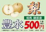 nashi(豊水500)