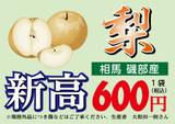 nashi03(600)