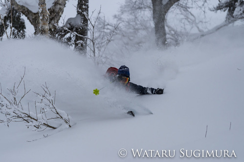Yusuke_Otari-2449