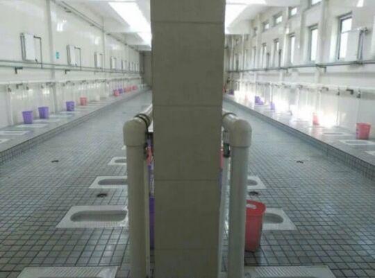 【画像】 中国のトイレがヤバすぎると話題に