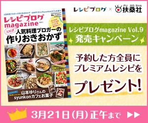 magazine9_300x250