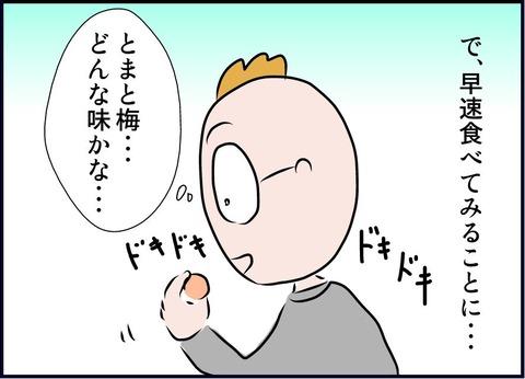 tomatoume07