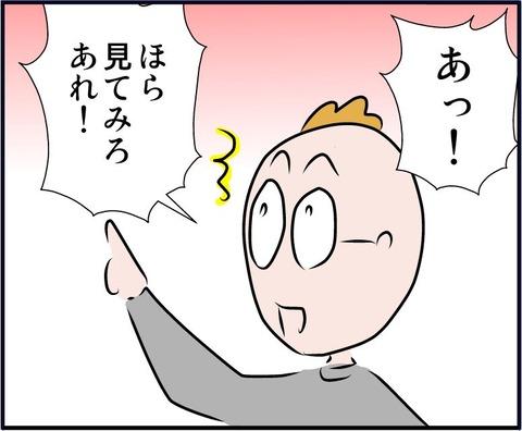 goshinboku05