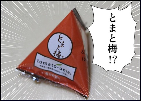 tomatoume04