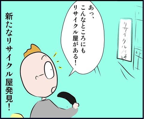 risac03