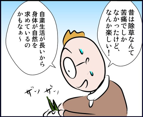 jyosod04