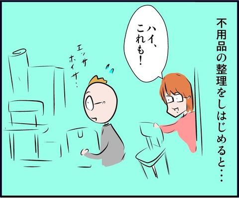 fuyou01