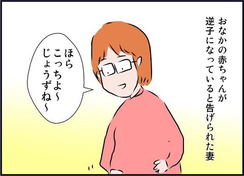 mainabi11-01