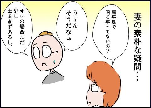 henpei01