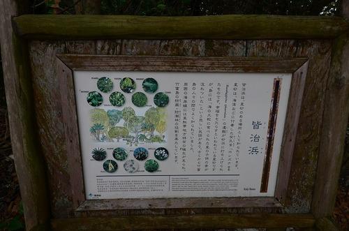 isigaki 126