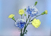 Fotor_149474200085771
