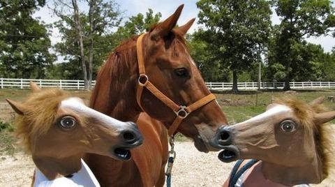 horse-mask-44