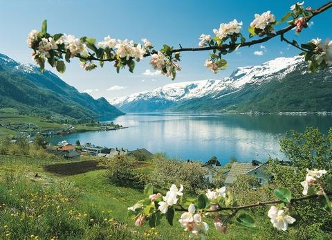 fjords18