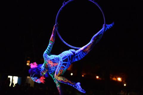 world-bodypainting-festival-2012-06