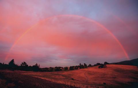 rainbows42