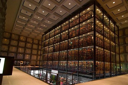 amazing_libraries_23