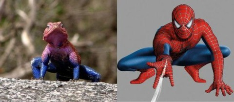 lizard_spiderman_640_12